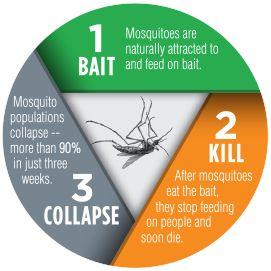 Terminix Allclear Mosquito Bait Kill Terminix Bait Mosquito