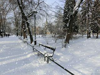 Wiersz O Zimie I Bożym Narodzeniu Białe Gwiazdki My