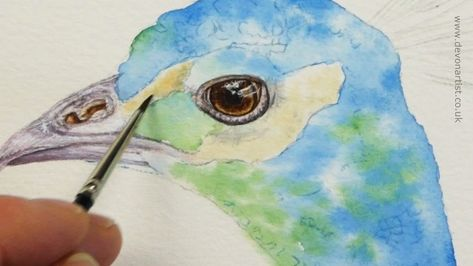 Using Watercolour To Paint Realistic Detail Painting Artist