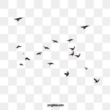 Kreative Fliegende Vogel Silhouette Illustration Abstrakt Vogel Silhouette Png Und Vektor Zum Kostenlosen Download Flying Bird Silhouette Birds Flying Flock Of Birds