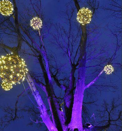 Diy Outdoor Xmas Lighting Ideas on outdoor christmas ideas, outdoor water features ideas, xmas light ideas, outdoor party lights ideas,