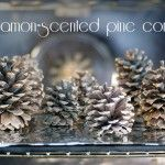 Cinnamon-scented pine cones {101 Days of Christmas}
