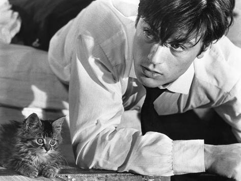 Photo: Les Felins Joy House by Rene Clement with Alain Delon, 1964 ...