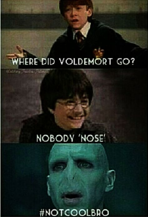 20 Funniest Memes Harry Potter - Memes Run