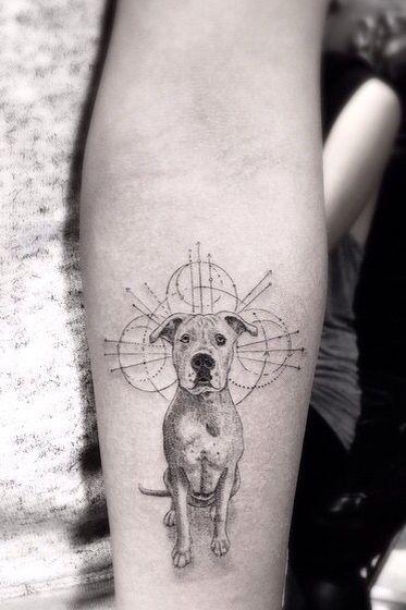 Tattoo Dogtattoo Tatuagem Tatuagemdecachorro Dog Doglovers Tattoolovers Dog Tattoos Cat And Dog Tattoo Dog Tattoo
