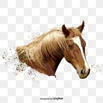 Horse Prints Horse Clipart Cartoon Horse Print Png Transparent Clipart Image And Psd File For Free Download Horses Textured Background Wood Texture Background