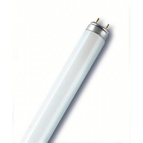 Tube Fluorescent T8g13 36w 1400lm Osram Products En