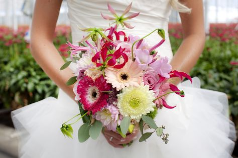 28 best Holstein Flowers @ Wedding inspiration gerbera images on ...