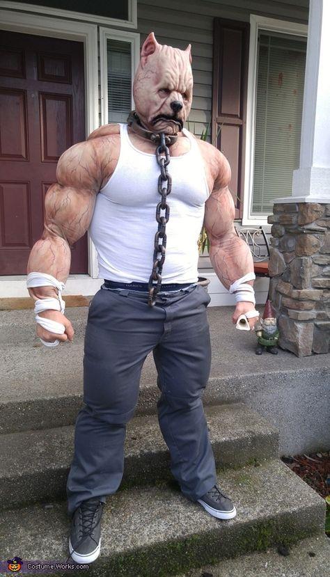 Pitbull Terrier - 2015 Halloween Costume Contest via @costume_works