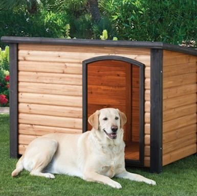 Insulated Dog House Keep Your Pet Friend Safe Insulated Dog