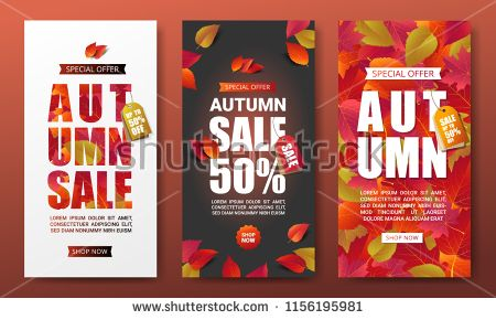 Autumn Sale Banner Layout Template Decorate With Realistic Leaves