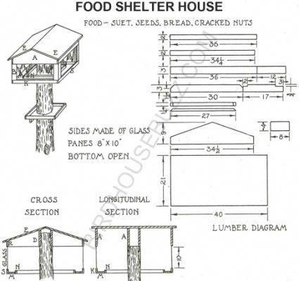 Build A Wooden See Through Bird Bird House Plans Free Bird House Plans Bird Houses