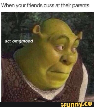 Pin On Funny Shrek Memes