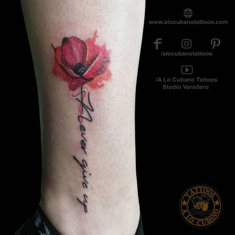 Colortattoo Pinterest Hashtags Video And Accounts