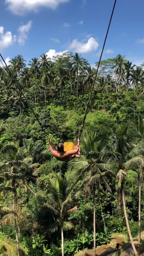 Want the thrill of being on top of the world? Here's all the information you need to visit the Bali Swing in Indonesia.