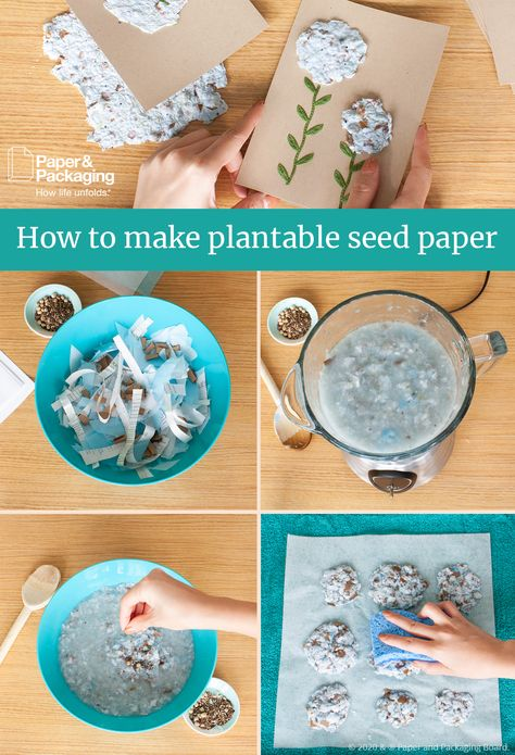 Learn how to make your own paper at home. Seed paper is an easy project that creates handmade paper you can use to recycle your old cardboard boxes. Cute Crafts, Diy Crafts To Sell, Crafts For Kids, Arts And Crafts, Paper Crafts, Homemade Gifts, Diy Gifts, Seed Paper, Nature Crafts