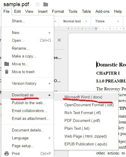 converter pdf google docs