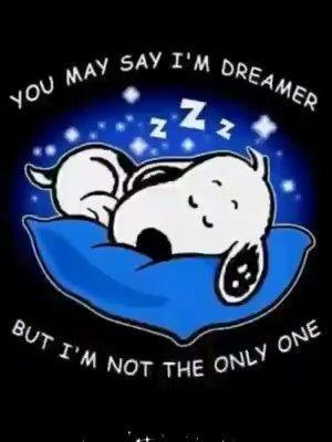 Good Night Sweet Dreams Sleep Tight | Sweet dreams sleep tight, Sweet dream  quotes, Sweet dreams my love