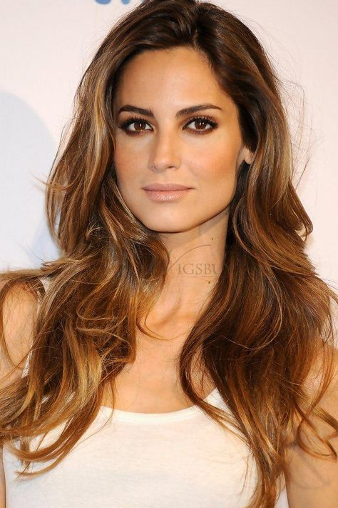 Ariadne Artiles Mixed Color Hair Long Loose Wave Lace Front Wig 100% Human Hair about 20 Inches: wigsbuy.com