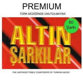 Cesitli Sanatcilar Altin Sarkilar Premium 2 Turkiyenin En Guncel Mp3 Indirme Ve Dinleme Sitesi Sarkilar Album Sanatcilar