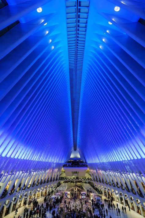 New York City Oculus at Christmas