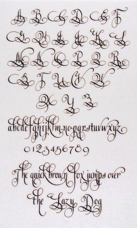 lindsey hook - Some new sample work in walnut ink on translucent...