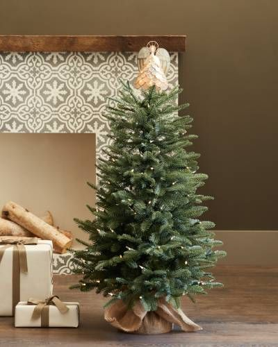 Balsam Fir Tabletop Tree Balsam Hill Lighted Tree Topper Tree Toppers Potted Trees