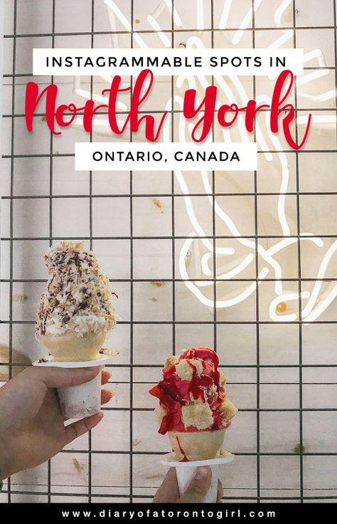 10 Most Instagram-Worthy Spots in North York