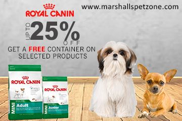 Save Up To 25 Off On Royal Canin Pet Food And Get A Free