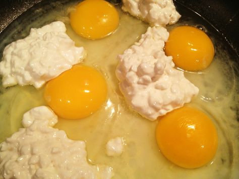 Cottage Cheese Egg Scramble - Best scrambled eggs Ive ever had! And VERY easy!