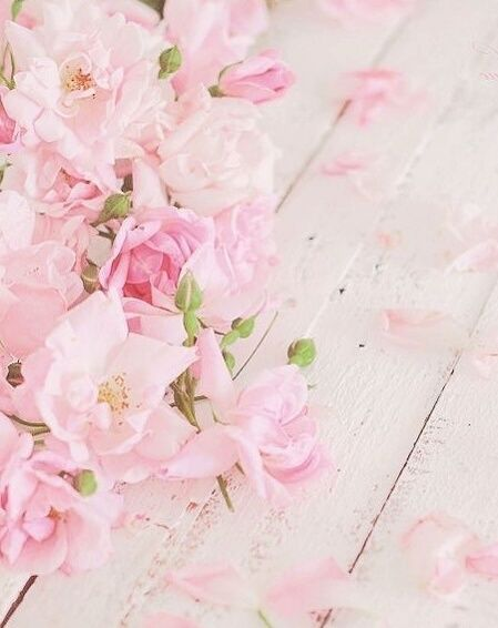 Image Discovered By Shan Find Images And Videos On We Heart It The App To Get Lost In What You Lo Flower Phone Wallpaper Flowery Wallpaper Floral Background