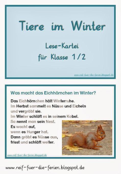 Tiere im Winter - Lesekartei