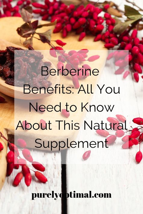 Due to age as well as environmental and lifestyle factors, our heart, gut, and immune system become at risk of life-altering diseases. Lucky you, there's a lot of natural compounds that improve various parts and functions of your body. Just like berberine.   #berberine #berberinebenefits #whatisberberine #berberineforweightloss #berberineproducts #berberinearticles #berberinesupplement #berberinediabetes #berberinecholesterol #berberinebloodsugar