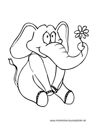 Ausmalbild Elefant Mit Blume Ausdrucken Ausmalen Ausmalbild Ausmalbilder
