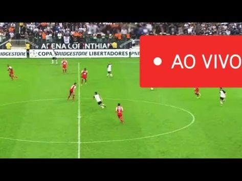 Assistir Botafogo X Corinthians Ao Vivo E Com Imagens Em Full Hd