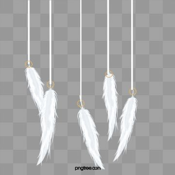 Feather White Feathers Falling Feathers Png Transparent Clipart Image And Psd File For Free Download Feather Clip Art Clipart Images
