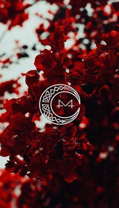 Download Mamamoo Red Moon Wallpaper By Poplockndropoulos E6 Free On Zedge Now Browse Millions Of Popular In 2020 Kpop Iphone Wallpaper Red Moon Witchy Wallpaper Creepslayerz steve palchuk eli pepperjack steli trollhunters. pinterest