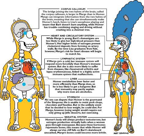 Bajos niveles de vitamina D y calambres musculares