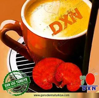 Dxn GANODERMA RG + GANODERMA GL termékek fogyáshoz, Dxn kávé a fogyáshoz