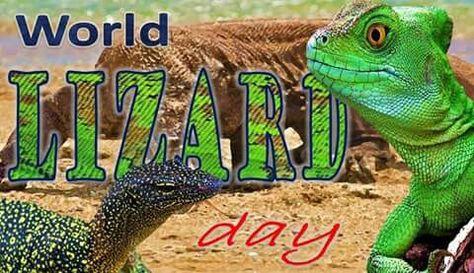 We are celebrating #WorldLizardDay. Join us. #biophiles #wildlife #biology #zoology #lizard #reptiles #ilovewildlife #ilovenature #iloveanimals