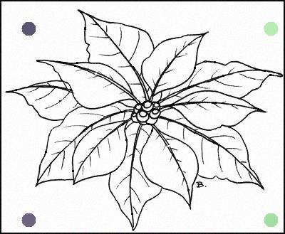 Pointsitter Christmas In 2019 Flower Coloring Pages Christmas