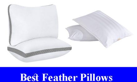 Best Feather Pillows Reviews Updated Feather Pillows Pillow Reviews Pillows