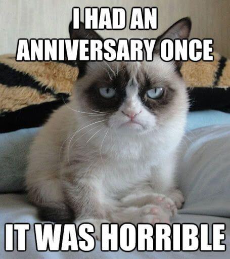 Happy Anniversary Funny Memes Anniversary Funny Happy Anniversary Funny Funny Cat Memes