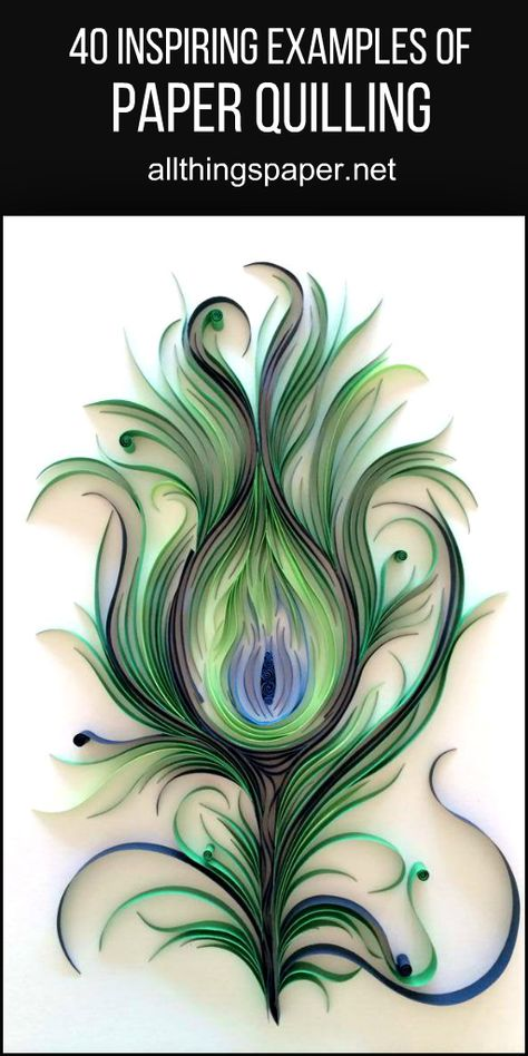 A variety of modern quilling styles #paperart #papercraft #quilling #peacockfeather