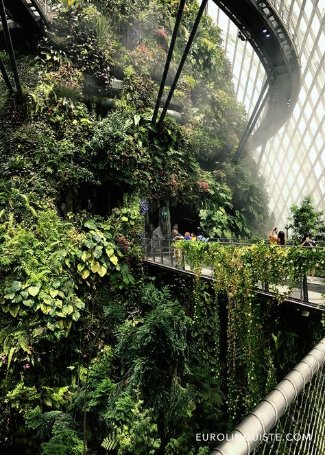 Gardens by the Bay at the Marina Bay Sands in Singapore Singapore Garden, Singapore Travel, Singapore Vacation, Singapore Singapore, Green Architecture, Landscape Architecture, Landscape Design, Singapore Tour Guide, Places To Travel
