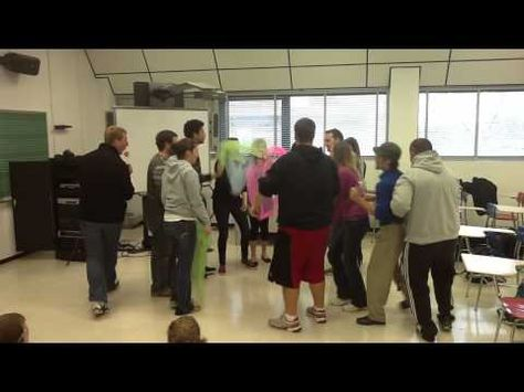 Rob Amchin—University of Louisville—Carnival of the Animals Aquarium - YouTube
