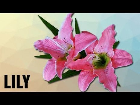 What I Wish Everyone Knew About Lily Flower Ka Hindi Meaning Lily Flower Ka Hi Flower Hindi Knew Lily Me In 2020 Flower Meanings Lily Flower White Lily Flower
