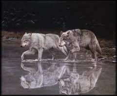 Mated pair http://media-cache4.pinterest.com/upload/85498092895985777_JUvd3V3w_f.jpg aikouwolf7 wolves
