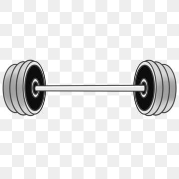 Fitness Equipment Dumbbell Barbell Dumbbell Clipart Fitness Equipment Equipment Png Transparent Clipart Image And Psd File For Free Download In 2021 No Equipment Workout Easy Workouts Fitness Backgrounds