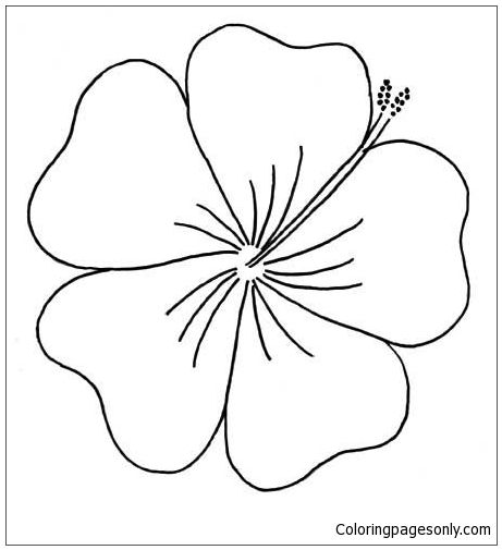 Hibiscus From Moana Disney Coloring Page Hawaiian Flower Drawing Embroidery Patterns Free Flower Outline